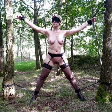 SM Bilder im Wald
