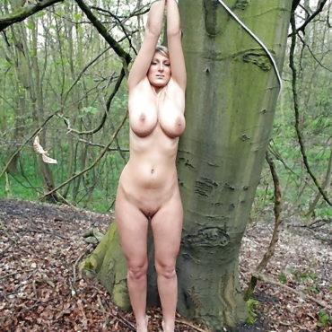 Wald SM Bilder